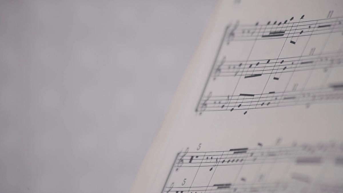 Sala Musica Home per professionista